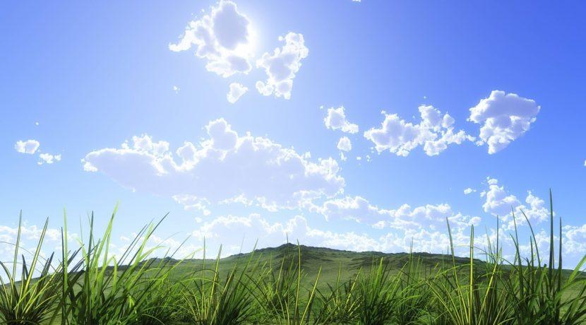 空の青さを知る人よ 場所 作画 キレイ 話題