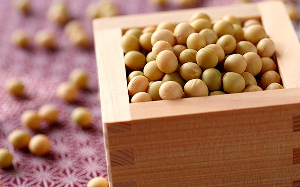 節分 豆まきいわし 食べる 由来 献立 変えても 良い