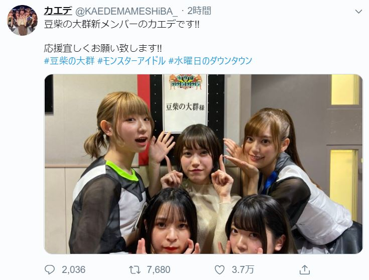 豆柴の大群 メンバー 全 プロフィール 人気順 動画 デビュー シングル りスタート