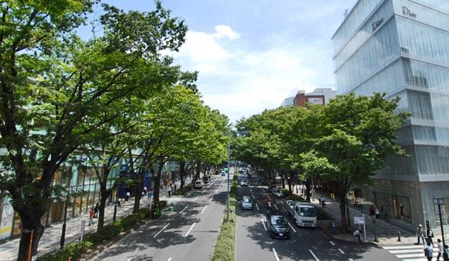ドラマ ギルティ ロケ地 家 撮影場所