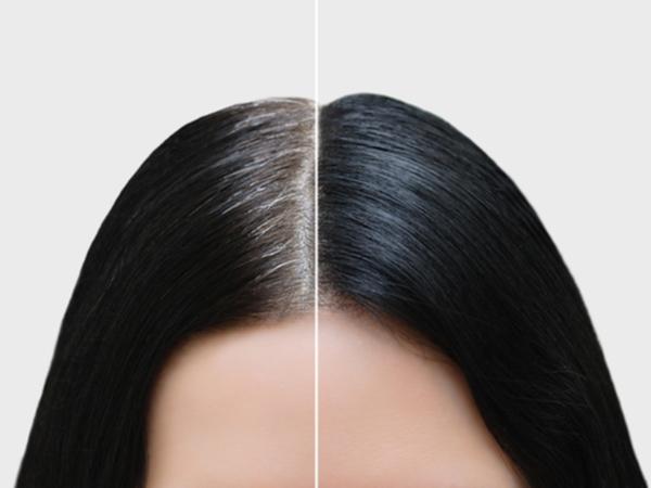ボタニカル エア カラー フォーム 効果 なし 永久 染毛剤 嘘